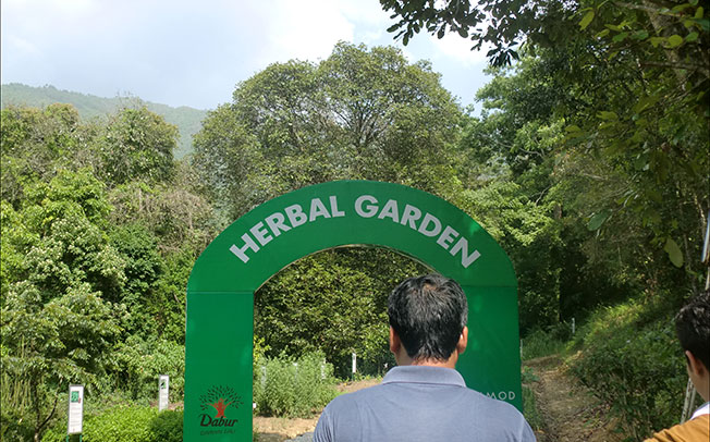 Herbal Park initiative in Suryapet